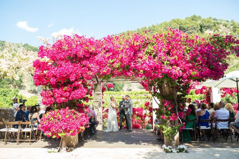 Soller outdoor wedding music photo by Natasha Cadman